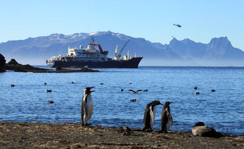 Le Marion Dufresne effectue chaque année 4 rotations à partir de l'ile de la réunion pour ravitailler les terres australes et antarctiques françaises