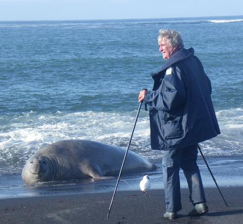 Olivier Clary devant un éléphant de mer des Kerguelen